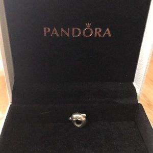 Pandora dolphin charm